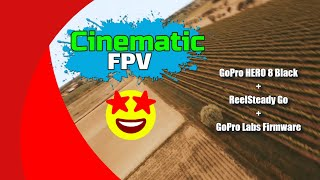Cinematic FPV with GoPro HERO 8 Black & REELSTEADY GO + NEW GoPro LABS Firmware Update!