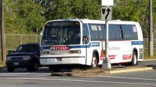 preview picture of video 'MTA NYCT Bus: 1998 Nova-RTS B84 Bus #4965 at Fountain-Flatlands Aves (East New York Bound)'