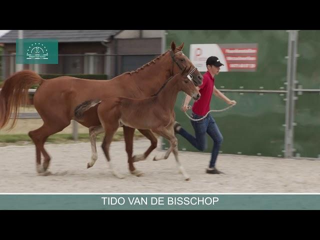 TIDO VD BISSCHOP