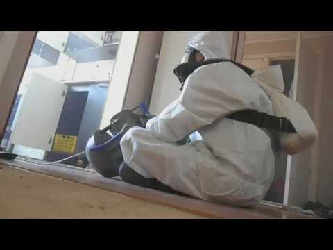 Пример работ: обработка от тараканов в квартире