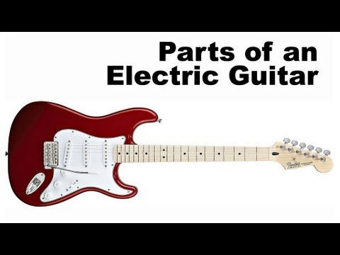 Parts of an Electric Guitar Tutorial for Beginners (Guitar Lesson)