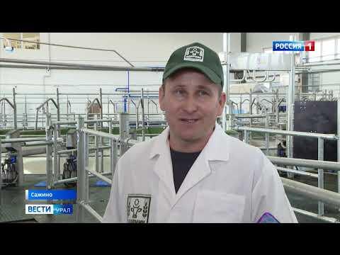Итоговый выпуск «Вести-Урал» от 13 сентября