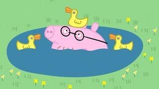 Peppa Pig en Español Episodios completos Papá pierde sus gafas | Dibujos Animados | Kholo.pk