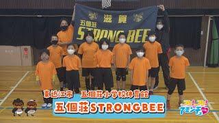 東近江でドッチボールを楽しむなら!「五個荘STRONGBEE」東近江市 五個荘小学校体育館