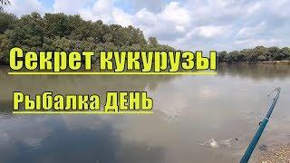 Рыбалка на кубани форум рыбалки