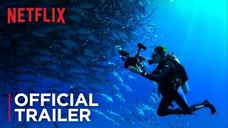 5 documentários inspiradores para qualquer mergulhador