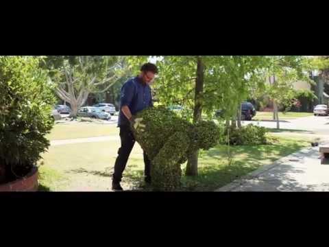 Neighbors (TV Spot 5)