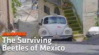 The Amazing Volkswagens of Mexico | A Look Inside