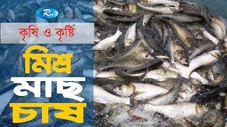Krishi O Krishti | মিশ্র মাছ চাষ করার পদ্ধতি | Ep-114 | Rtv Lifestyle | Rtv