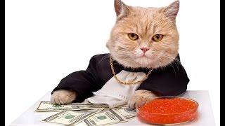 Лучшие анекдоты #3. Анекдоты про Деньги.
