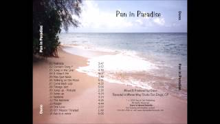 Steel Drum - Harry Belafonte Jump in the Line (Shake, Señora) Soca by Dano's Island Sounds