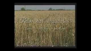 preview picture of video 'Žetva i vršidba u prošlosti, Županja 7.srpnja 2012.'
