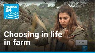 Why Italian graduates are choosing life on the farm