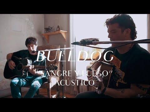 Bulldog video Sangre y fuego - CMTV Acústico 2018