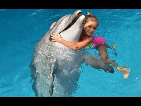 Elif havuzda yunuslarla yüzüyor , Bu yunuslar çocuklara terapi ve tedavi için kullanılıyormuş