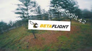 Trying Betaflight 4.2 with 96Khz Tekko32 60a Metal ESC - FPV Freestyle