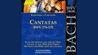 Ich ruf zu dir, Herr Jesu Christ, BWV 177: Ich bitt noch mehr, o Herre Gott (Alto)