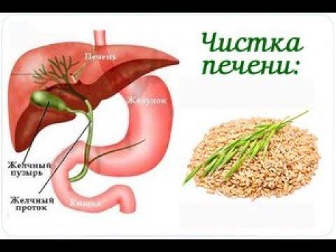 Серотипы гепатита а