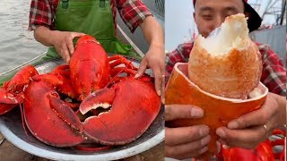 Fisherman Eating Giant Lobster Mukbang | Chinese Seafood Mukbang Show