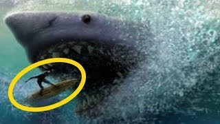 what if megalodon sharks didnt go extinct - 免费在线视频最佳电影电视