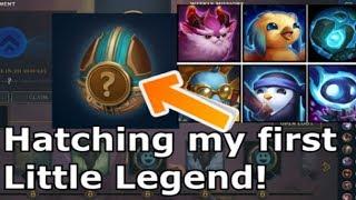 How to get your FIRST LITTLE LEGENDs - Teamfight Tactics Little Legends Egg Reward TFT lol Guide