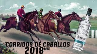 Corridos de Caballos Mix 2018 (Grupo Laberinto y Banda Los Lagos)