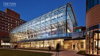 Sustainable design in education building – the Institute of Environmental Sustainability