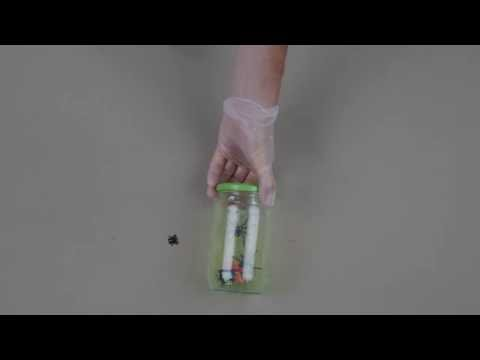 Halloween-Dekoration:phosphoreszierendes Glas
