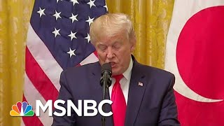 Elephant In The Impeachment Hearing: Trump Hands Russia Big Wins   Rachel Maddow   MSNBC