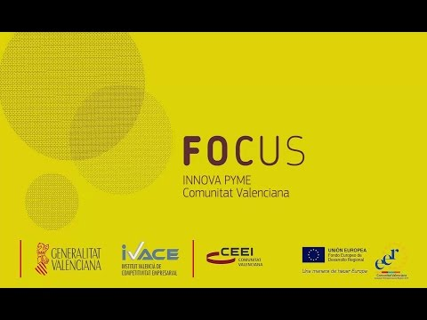 Resumen Focus Innova Pyme CV 2015