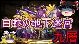 【パズドラ】 白蛇の地下迷宮 九層