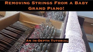 In Depth Tutorial on How to Remove Grand Piano Strings