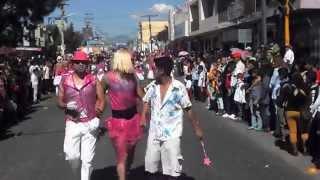 preview picture of video 'PASEO 2014 LA INMACULADA CONCEPCION SAN MATEO ATENCO 3'