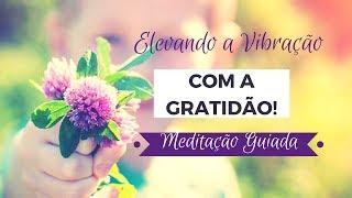 Elevando a vibração com a Gratidão