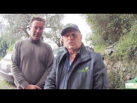 LES UTILISATEURS TEMOIGNENT – Patrick TOUFLAN, propriétaire d'une Zoe première génération