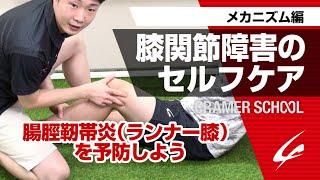膝関節障害のセルフケア2 メカニズム編