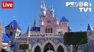 🔴Live: Friday Night at Disneyland Live Stream in 1080p - 8-23-19