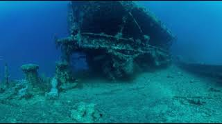 Thistlegorm - Below Bow