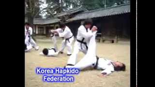 Short Documentary on the Introduction of the Korea Hapkido Federation - Translated in English
