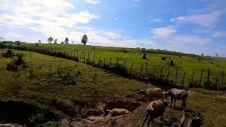 "Balikpapan's Buffalo Hills | FPV | Apex Frame 5"""