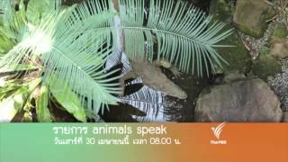 Animals Speak - สวน - สัตว์ ตอนที่ 2