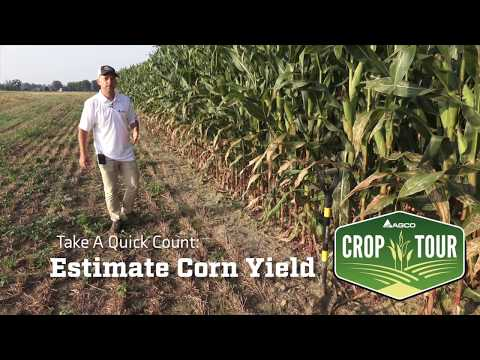 Counting Kernels to Estimate Corn Yield - Insights from AGCO Crop Tour 2018