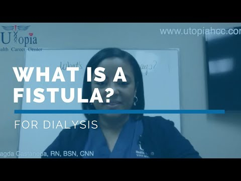 FREE *Dialysis Training Program* Video Class - What is a fistula for ...