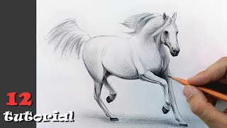 Как нарисовать коня (лошадь) карандашом? Поэтапный урок с объяснением!