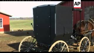 +4:3 Amish men jailed for refusing to display reflective triangles on buggies