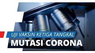 4300 Mutasi Virus Corona Telah Terdeteksi, Para Ahli di China Lakukan Uji Coba Vaksin Corona Ketiga