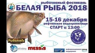 Рефтинское водохранилище отчет о рыбалке