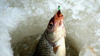 Рыбалка ока ланьшино