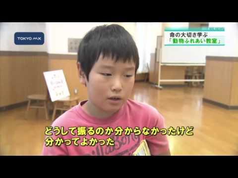 犬の五感を擬似体験 大田区の小学校で「動物ふれあい教室」