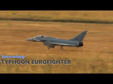 freewing-rcimpellerjet-typhoon-eurofighter-mit-vektorsteuerung-mfc-neustadtsonneberg
